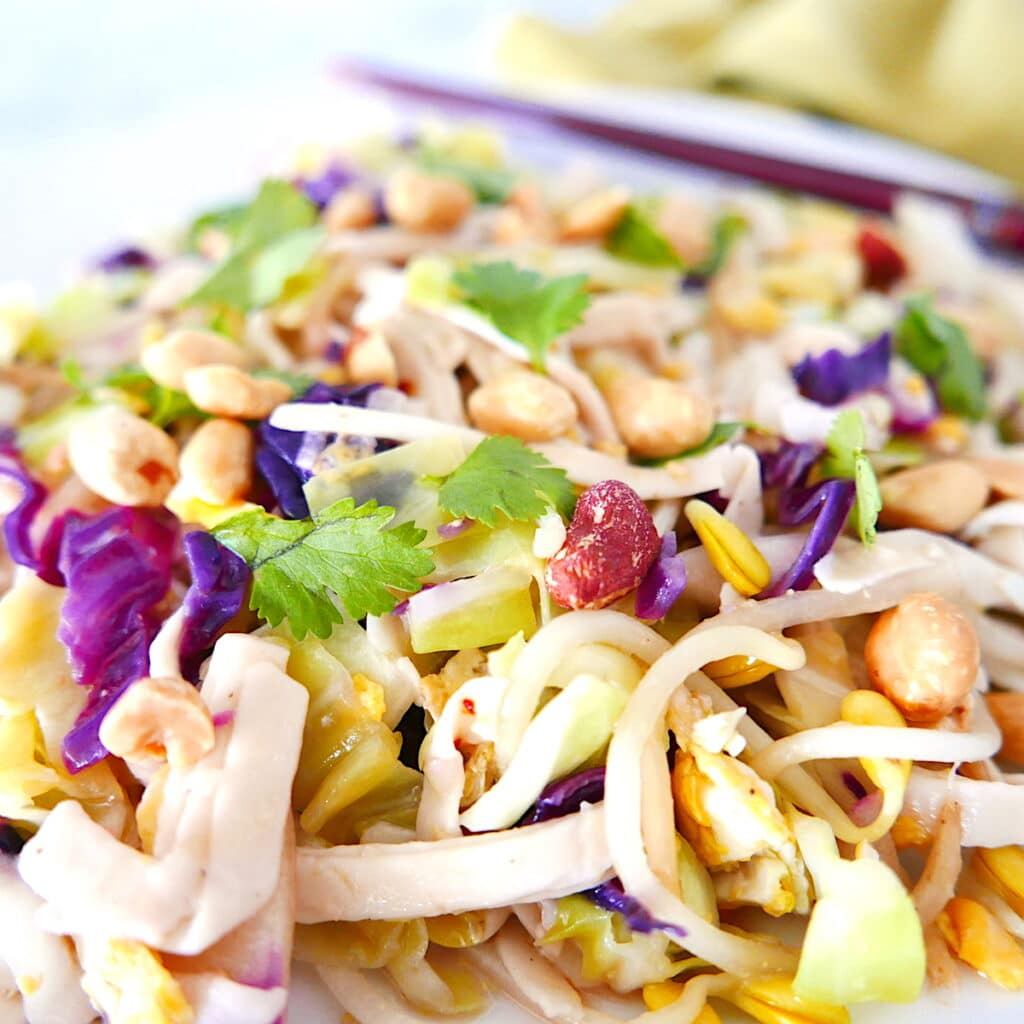 close up of healthy peanut pad thai with cilantro and toasted peanuts on a white plate