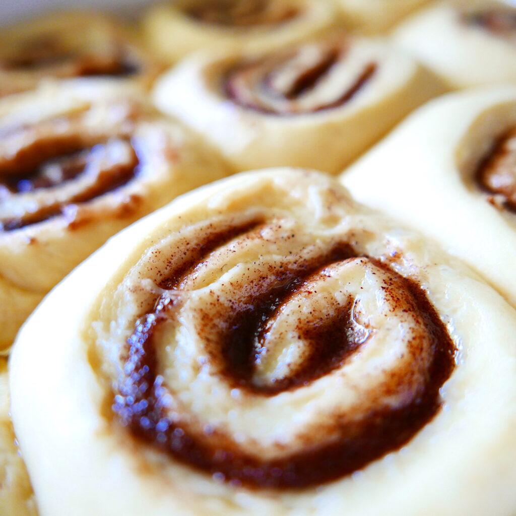 gooey cinnamon buns proofing in a baking dish
